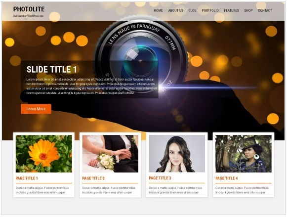 WordPress Themes: Photolite